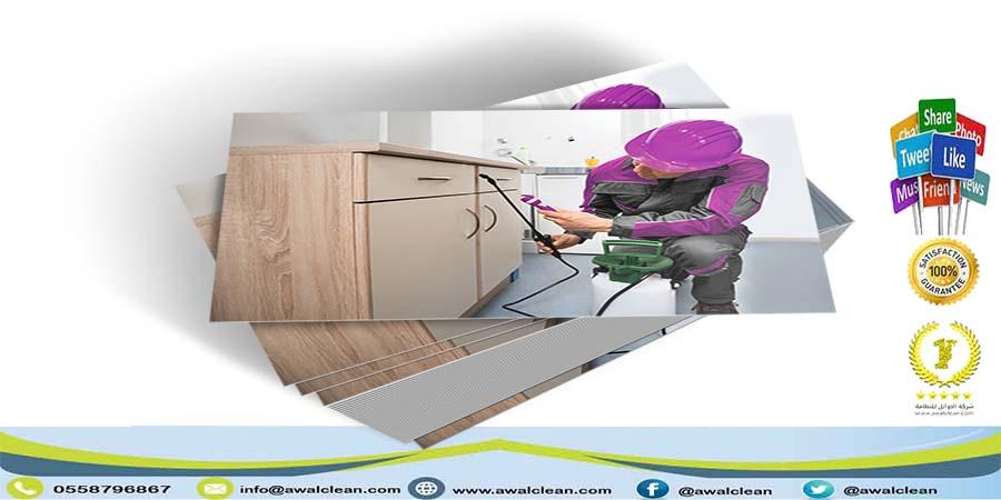 شركة رش مبيدات شرق الرياض 0558796867