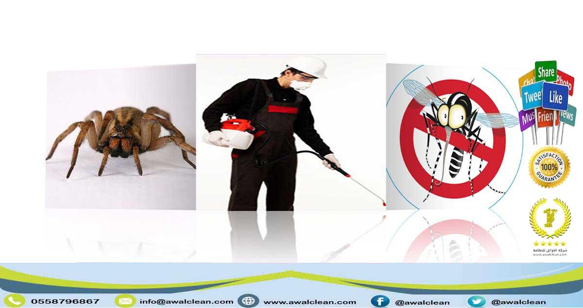 شركة رش مبيدات بجدة 0558796867