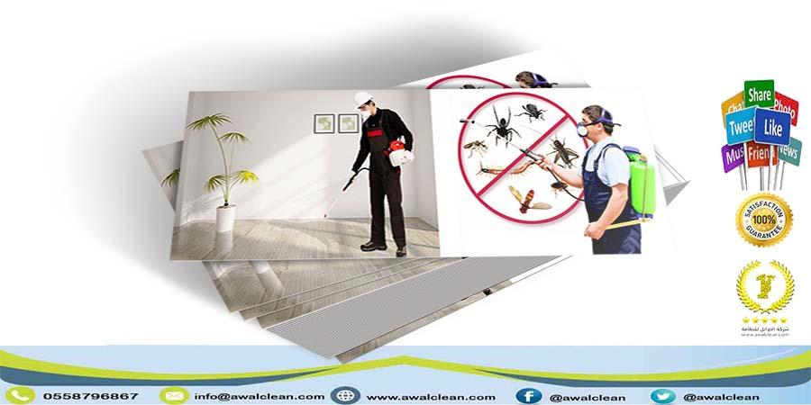 شركة مكافحة حشرات جنوب الرياض 0558796867