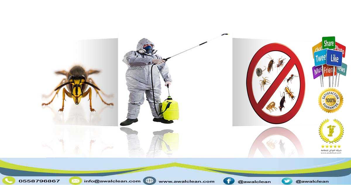 شركة مكافحة حشرات بالرياض 0558796867