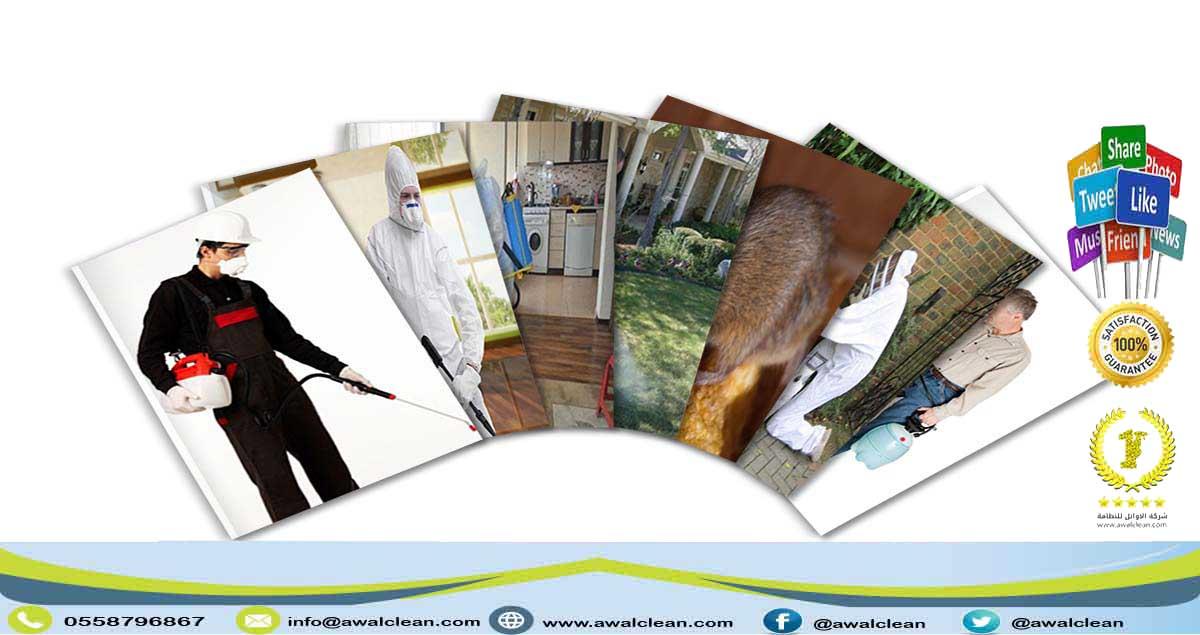 شركة مكافحة حشرات بالقصيم 0559138319