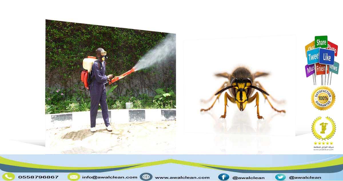 رش مبيد قبل صبة النظافة 0558796867